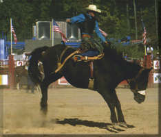 Shawnee Rodeo